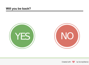 Yes or No iPad Survey App.