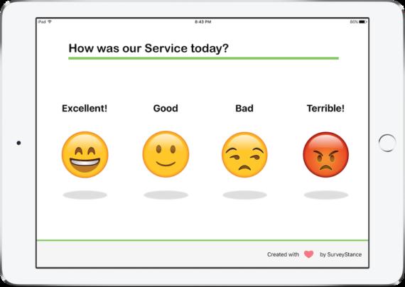 iPad Survey App -