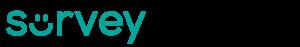 SurveyStance Smiley Logo